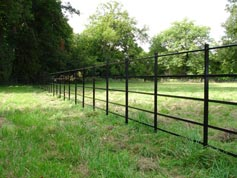 Iron horse paddock fencing